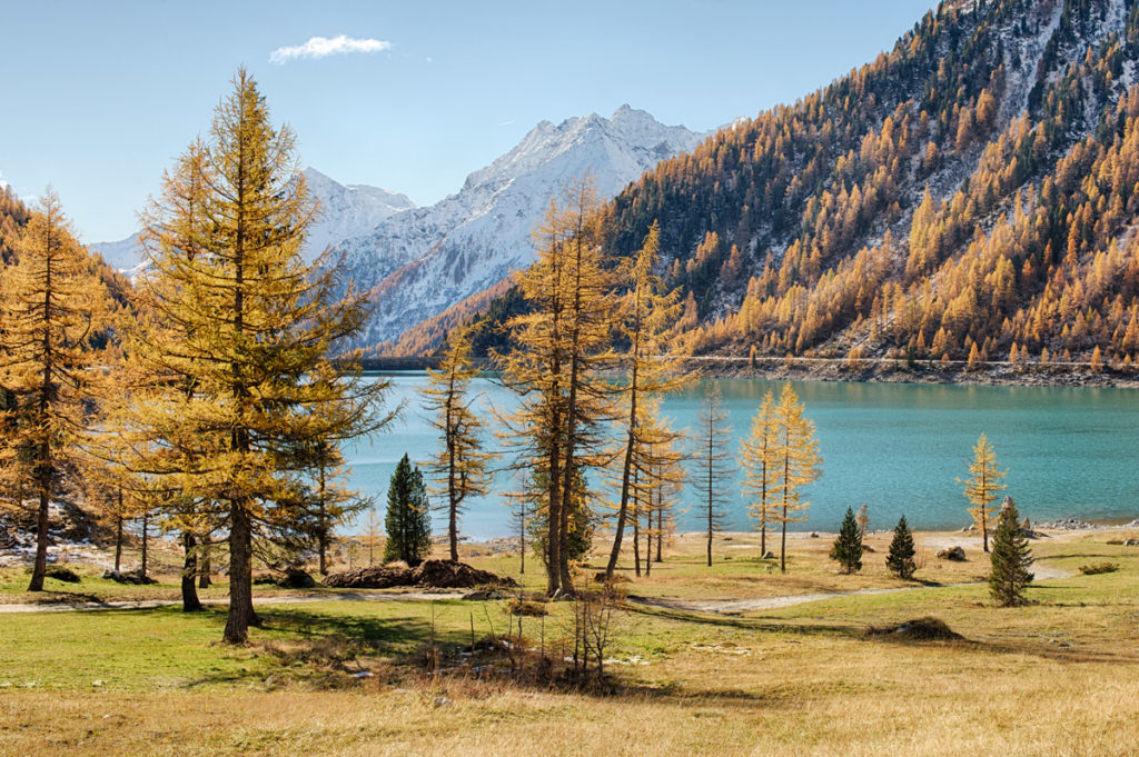 Il Lago di neves in uno scatto autunnale